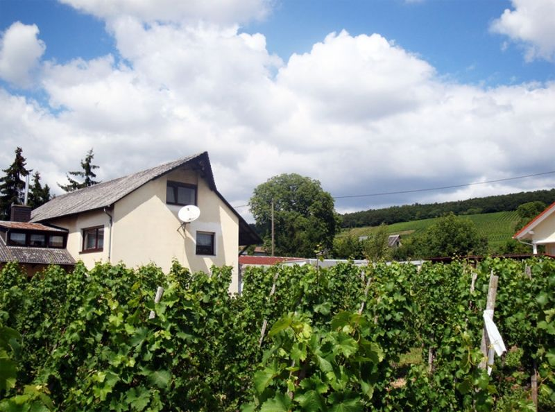 Weingut Winfried Winter